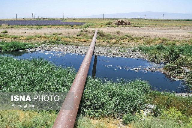 آبیاری محصولات کشاورزی با پساب فاضلاب