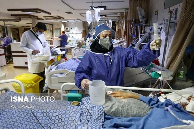 بستری 117 بیمار در بخش های کرونایی بیمارستان های استان بوشهر